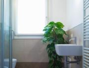 Dependance 206 bagno