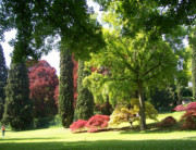 Sigurtà Garden and Park (VR)