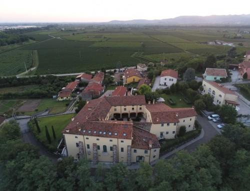 Aerial view of Residence and vineyards